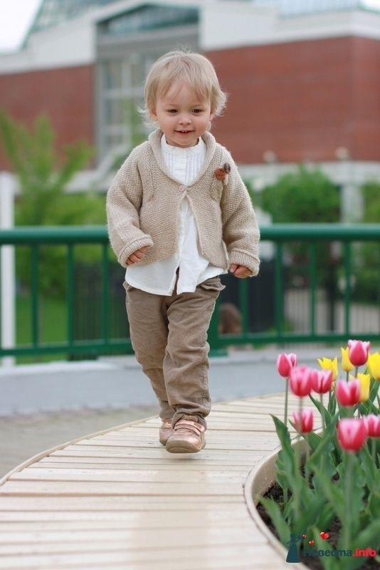 Фото 100578 в коллекции Детский мир - Тумская Ольга