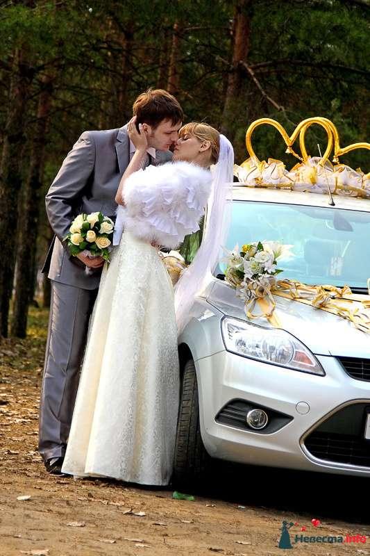Фото 100050 в коллекции Фотограф Вячеслав Стукало - Свадебная фотография - Невеста01