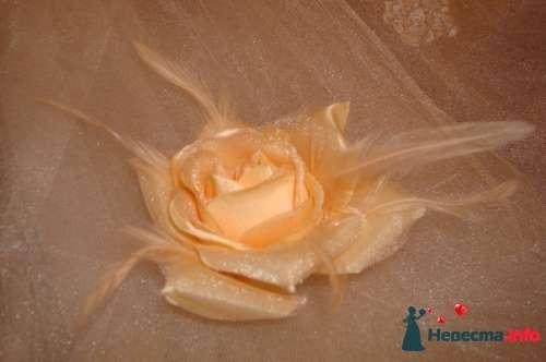 Фото 102205 в коллекции Аксессуары  - Платье для Золушки - прокат свадебных платьев