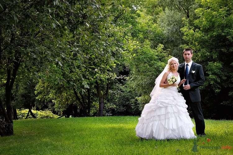 Фото 36725 в коллекции Свадебные - Фотограф Наталья Черкасова