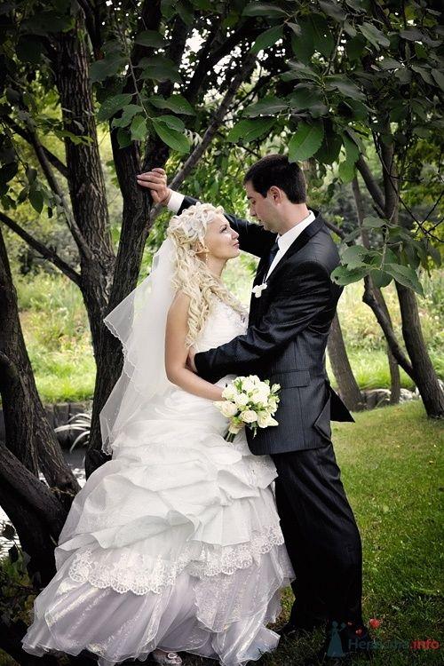 Фото 36727 в коллекции Свадебные - Фотограф Наталья Черкасова