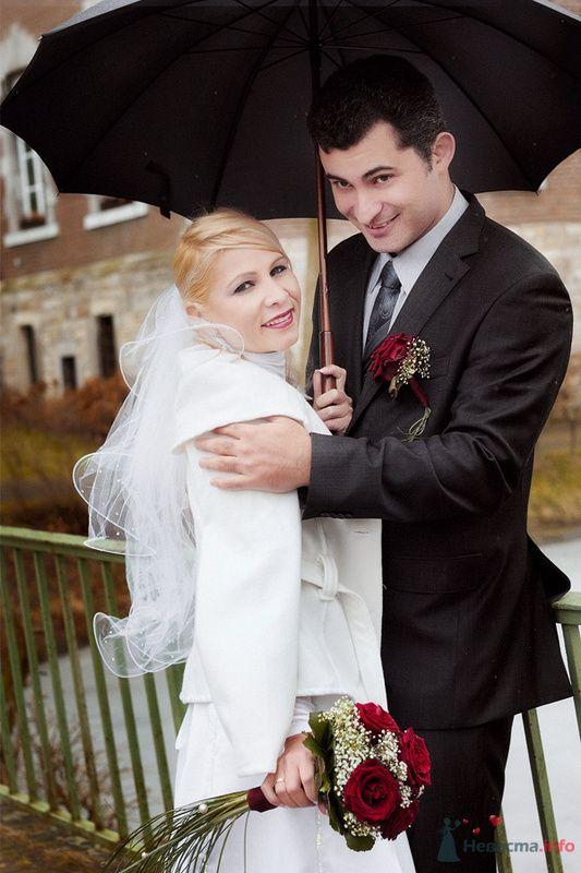 Фото 71447 в коллекции Свадебные - Фотограф Наталья Черкасова