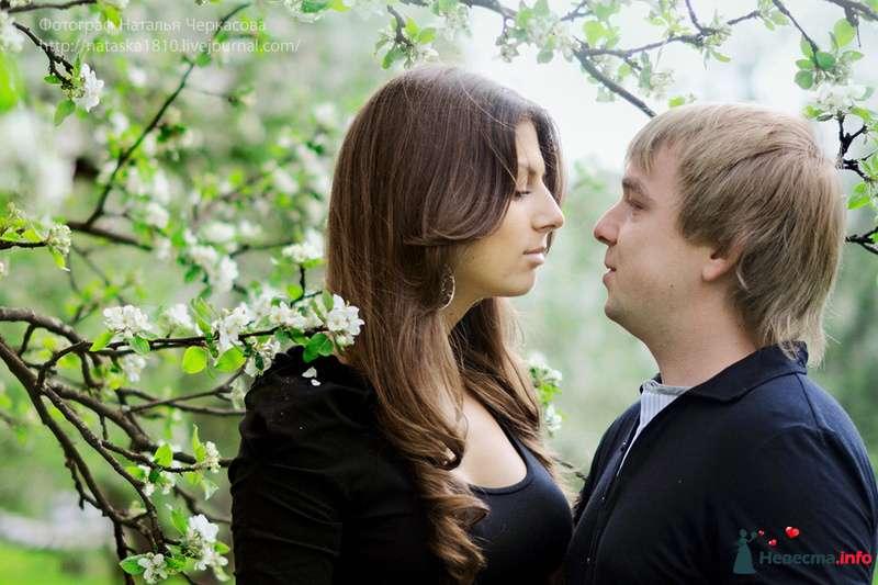 Фото 97303 в коллекции Инара (Inessa18) и Алексей в яблоневом саду - Фотограф Наталья Черкасова