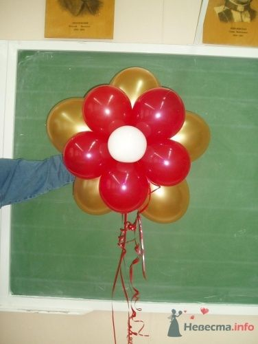 Фото 11485 в коллекции Как  украсить зал шариками самостоятельно - Невеста01