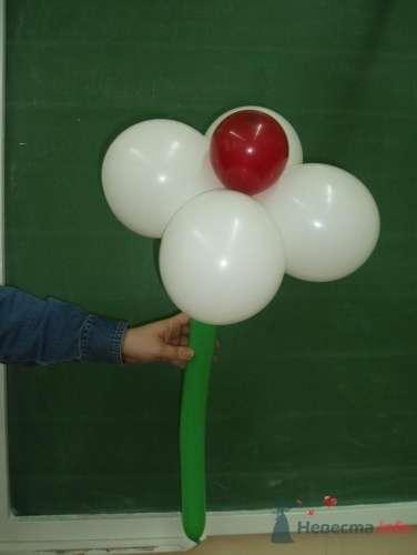 Фото 11492 в коллекции Как  украсить зал шариками самостоятельно - Невеста01