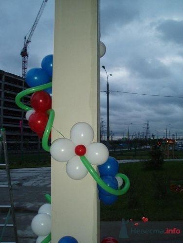 Фото 11495 в коллекции Как  украсить зал шариками самостоятельно - Невеста01