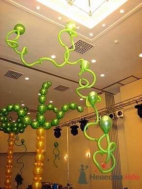 Фото 15566 в коллекции Как  украсить зал шариками самостоятельно - Невеста01