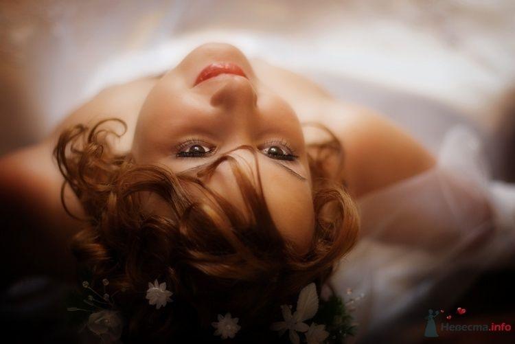 Фото 60800 в коллекции Мои фотографии - Екатерина79