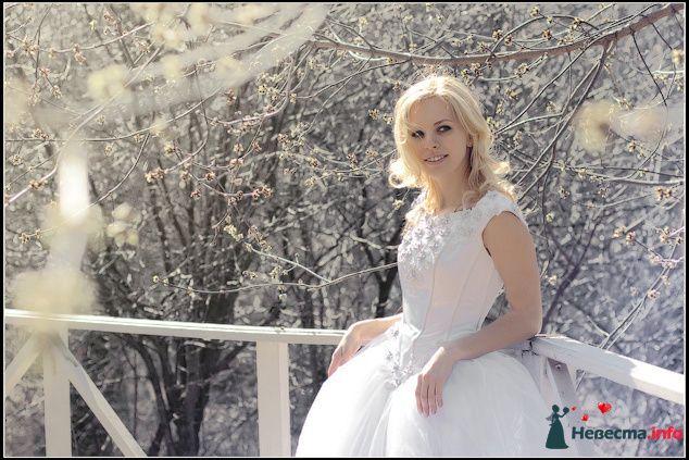Фото 88777 в коллекции Свадебная фотосъёмка - Невеста01