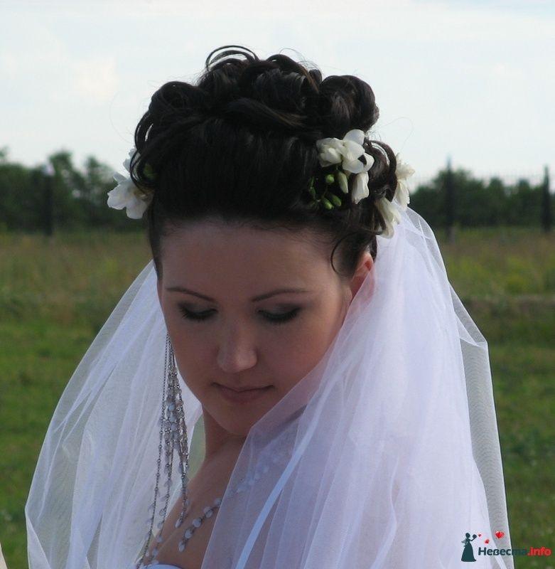 я нежная и добрая, возьми меня в жены... - фото 102951 zuravlenteva