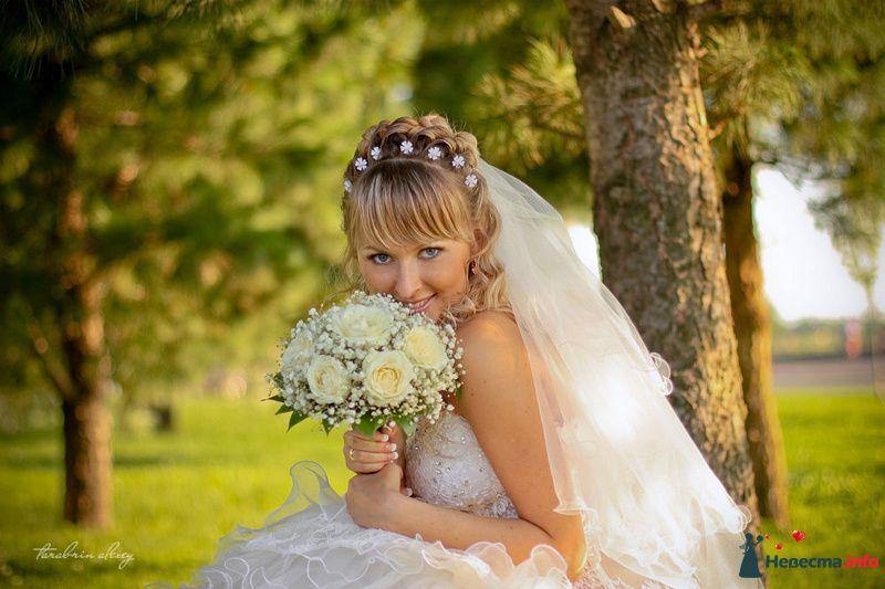 Бракосочетание Максима и Людмилы. г. Томск - фото 102689 Алексей 89059256709