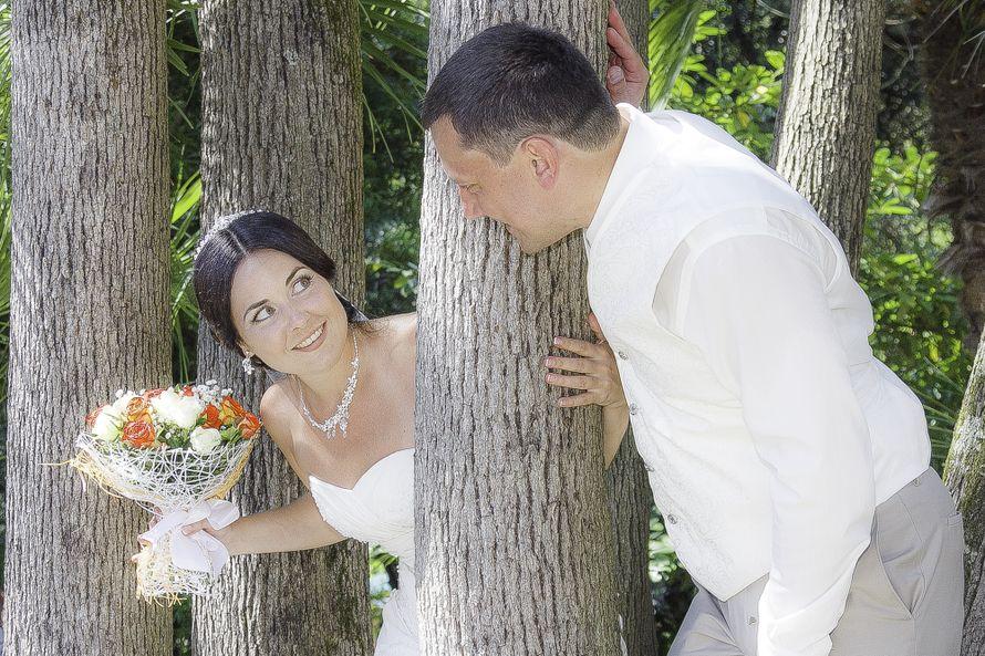 Фото 3038933 в коллекции цитрусовая свадьба Дмитрий и Людмила - EmotionSochi - фотосъёмка