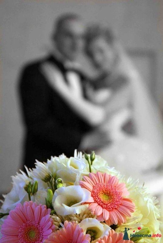 Фото 103216 в коллекции свадьба