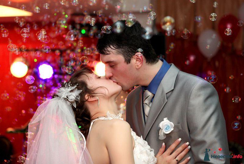 Фото 104141 в коллекции свадебный фотограф Ирина Калашникова 8-903-642-5940 - свадебный фотограф Ирина Калашникова