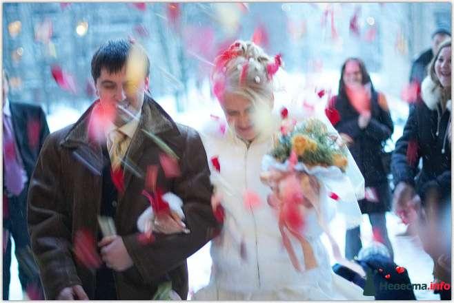 Фото 104048 в коллекции Свадьбы - Ведущая Светлана Пичугина