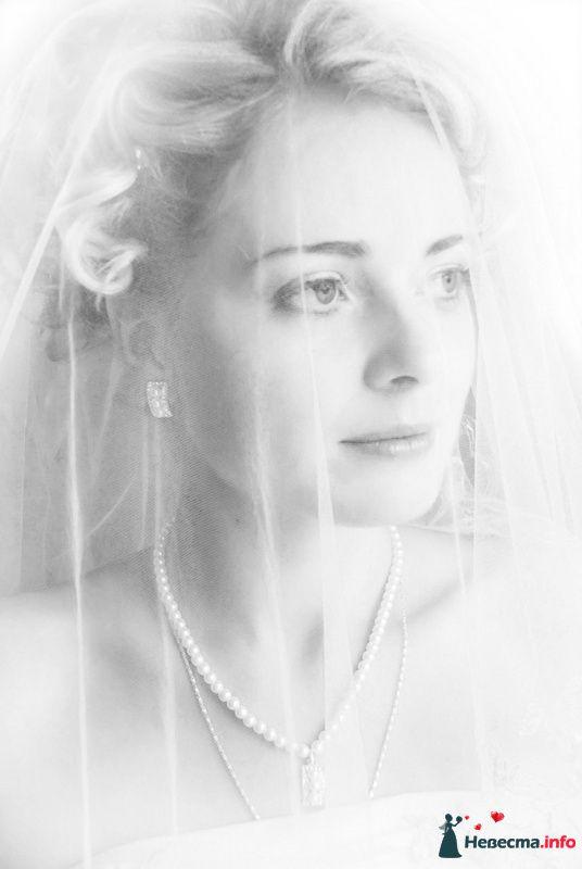 Портрет невесты - фото 107432 Невеста01