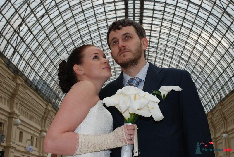 Фото 107536 в коллекции Свадебное фото - BitoCam - фото и видео
