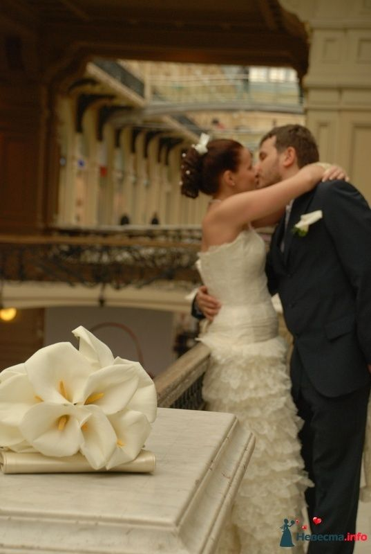 Фото 107537 в коллекции Свадебное фото - BitoCam - фото и видео