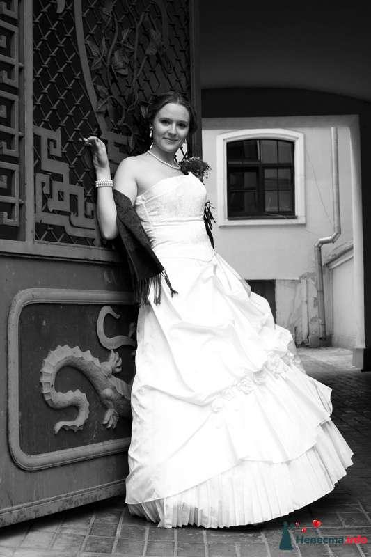 Фото 111012 в коллекции wedding - Анастасия Новикова - фотограф