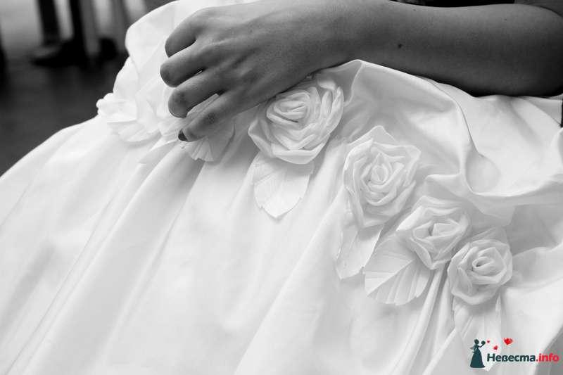 Фото 112645 в коллекции wedding - Анастасия Новикова - фотограф