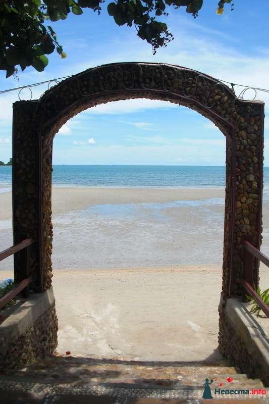 море,отлив - фото 107019 Клёна