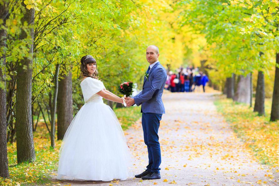 Свадебная прогулка в Екатерининском парке. Осенняя свадьба. - фото 3794807 Фотограф Петров Максим