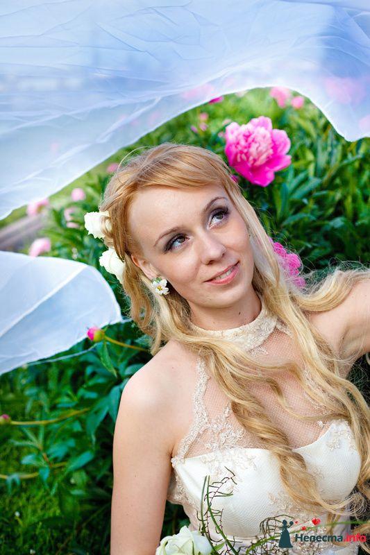 Фото 122489 в коллекции Wedding Photo - Фотограф Maomi films