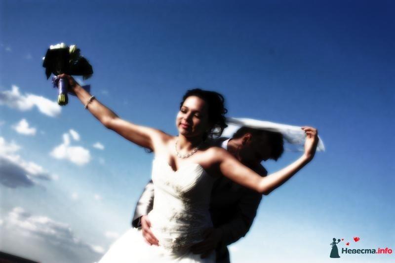 Фото 106849 в коллекции Свадебная фотография - Игорь Моисеев