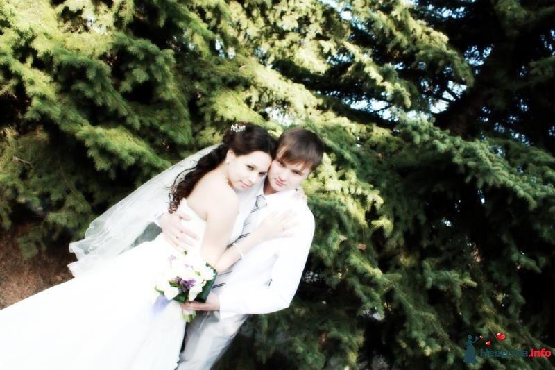 Фото 106850 в коллекции Свадебная фотография - Игорь Моисеев