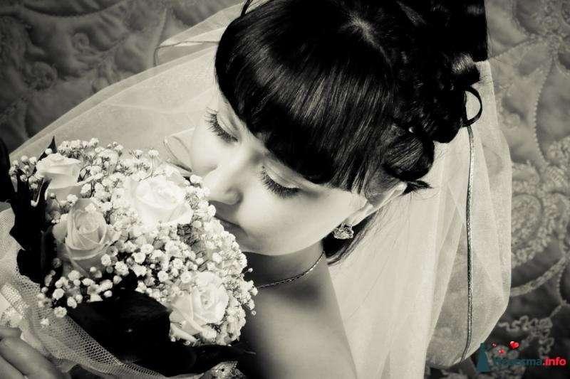 Фото 106858 в коллекции Свадебная фотография - Игорь Моисеев