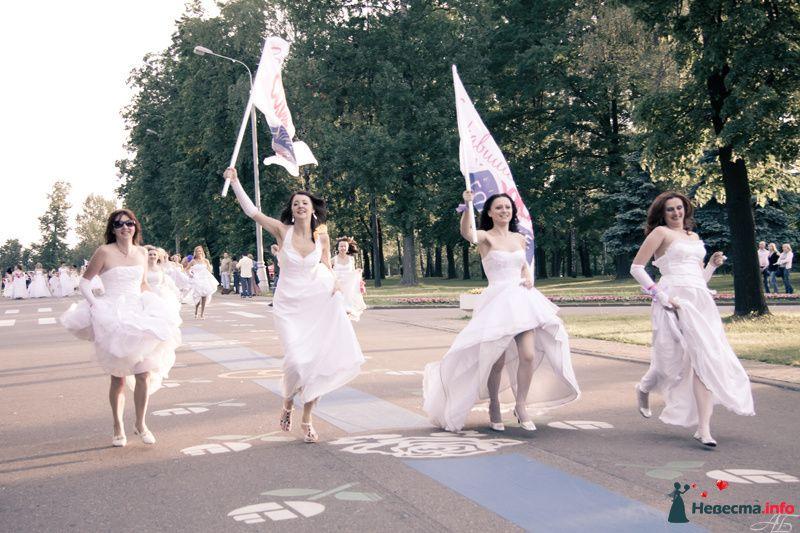 Фото 128886 в коллекции Сбежавшие невесты - DarkCamelot - фотограф