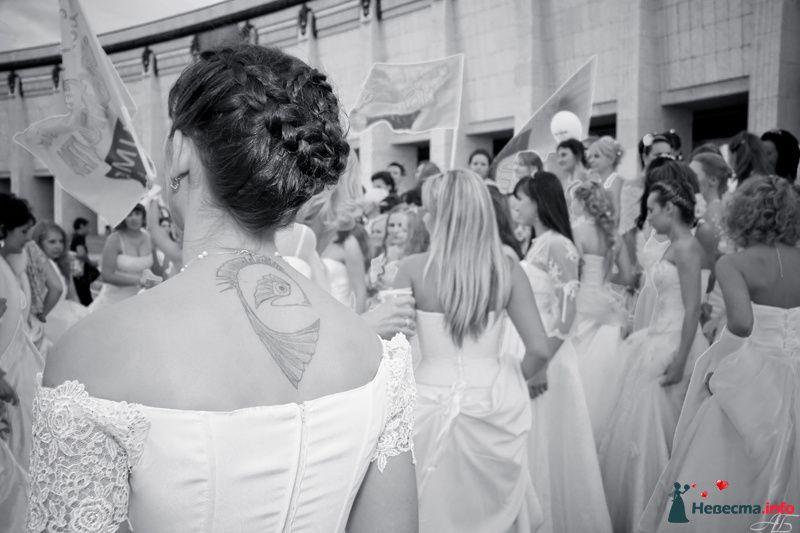 Фото 128887 в коллекции Сбежавшие невесты - DarkCamelot - фотограф