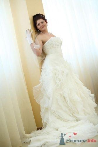 Фото 173 в коллекции Моя свадьба