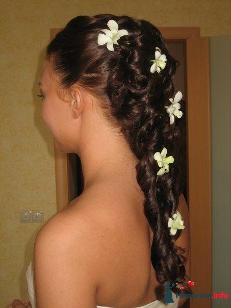 Фото 110716 в коллекции Мои фотографии - Свадебный стилист Дарья Карюхина