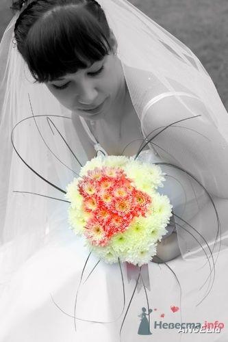 Фото 23197 в коллекции Мои фотографии - Maria2105