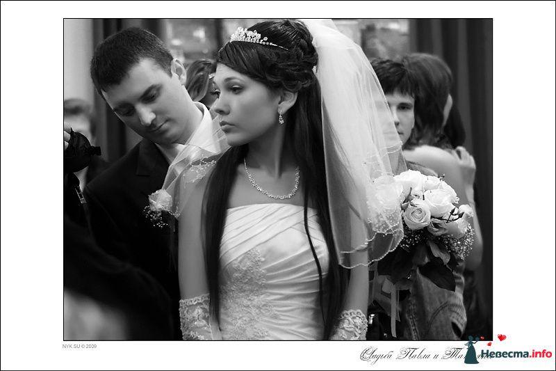 Свадебный фотограф Николай Сульженко - фото 109419 Свадебный фотограф Николай Сульженко