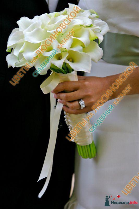 Фото 112462 в коллекции Подготовка к свадьбе. - lebedkun4ik