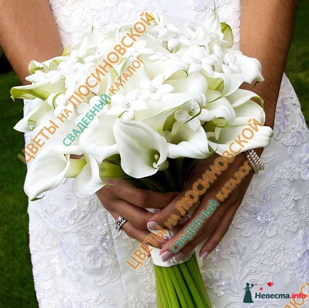 Фото 112463 в коллекции Подготовка к свадьбе. - lebedkun4ik