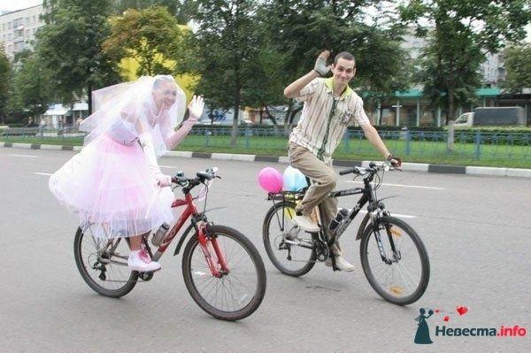 Фото 122030 в коллекции Разное... - *VENERA*