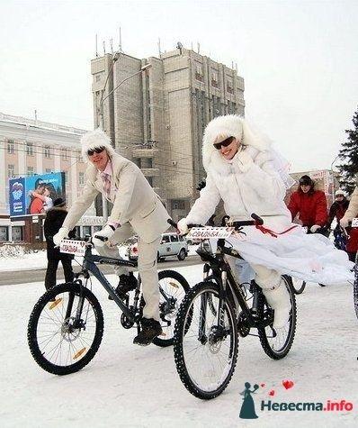 Фото 122039 в коллекции Разное... - *VENERA*