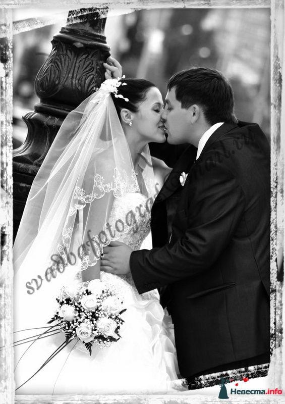 Фото 111033 в коллекции Свадебный Альбом - Мария Чайка