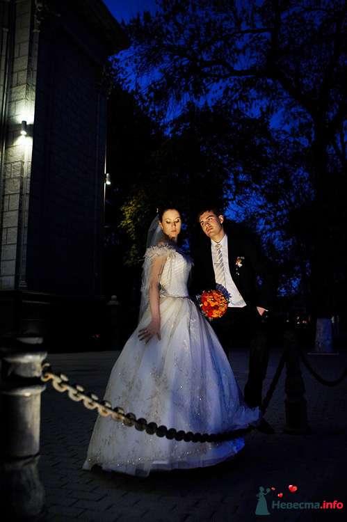 """Фото 111266 в коллекции Мои фотографии - Свадебное агентство """"Свадьба твоей мечты"""""""