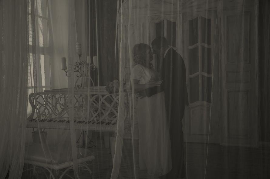 Фото 15055492 в коллекции Портфолио - Фотограф Алёна Разорвина