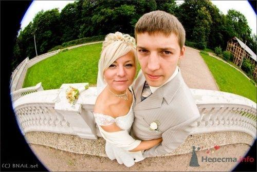 Фото 9495 в коллекции Оля и Володя - Свадебный фотограф Ерофей Петухов
