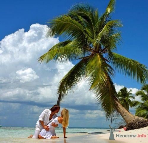 Фото 16426 в коллекции Свадебное путешествие на Доминиканы - Свадебная мастерская ОП-позиция