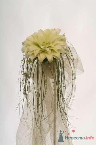 Фото 17984 в коллекции Мои фотографии - Невеста01