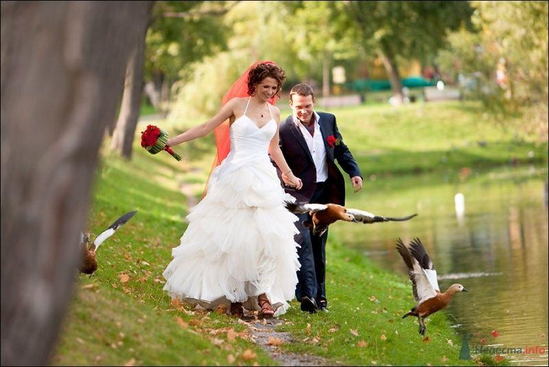 Жених и невеста, взявшись за руки, идут вдоль озера