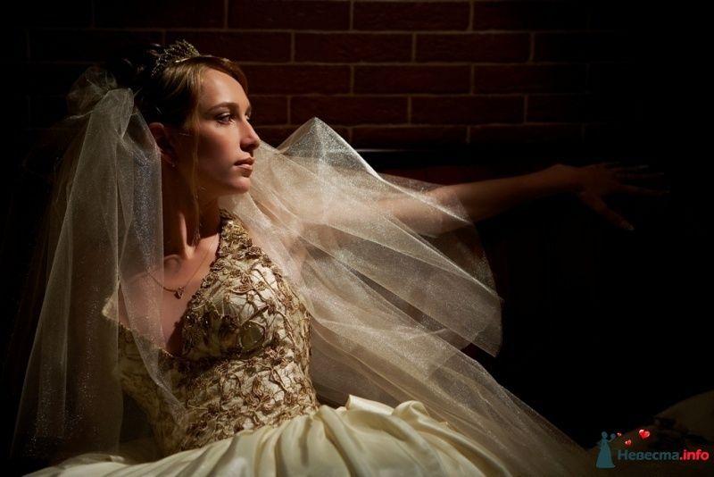 Фото 115606 в коллекции Высокая Мода Свадеб - Moon Light Agency - свадебное агентство