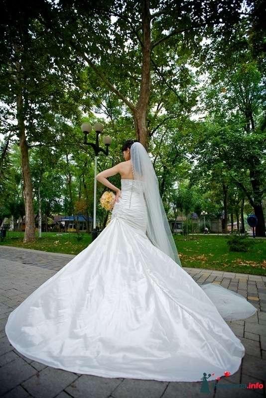 Фото 179895 в коллекции EdelWeissDress - EdelWeiss - wedding planning