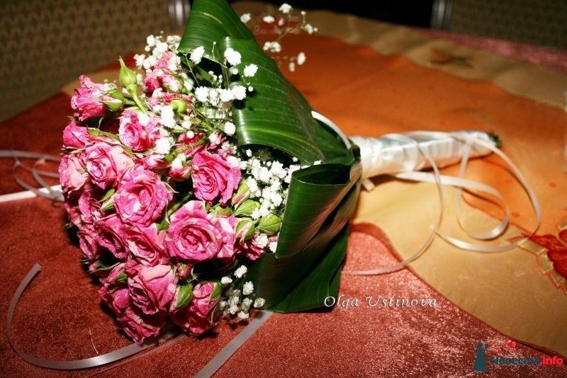 Фото 268364 в коллекции Свадебный - Свадебный фотограф Ольга Устинова